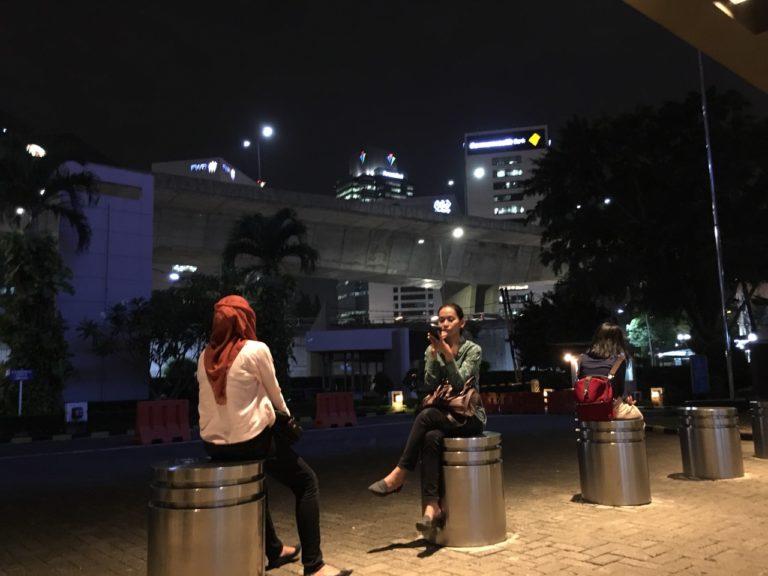インドネシア調査